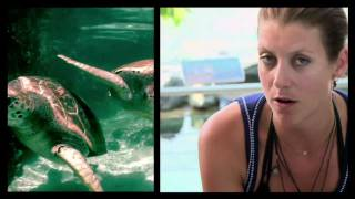 Kate Walsh Wants to 'Get Turtles Off the Hook'