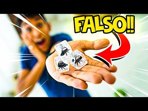 🕷 TROLLAGEM DA ARANHA NO GELO FALSO !! ‹ AUTHENTIC  ›