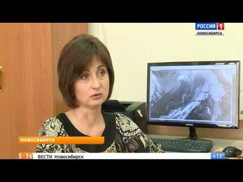 Синоптики рассказали о погоде в Новосибирске в июне