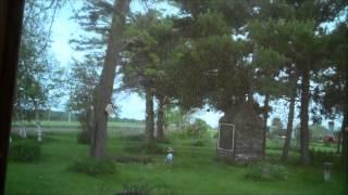 TRACTOR    WIND   WATER  BIRDS  FROGS   BIRDS   RAIN   SOUNDS