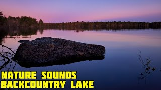 Nature Sounds To Relax - Crickets And Frogs