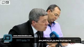 مصر العربية |  باحث بوزارة الزراعة: يوسف والي دمر زراعة القطن بمصر