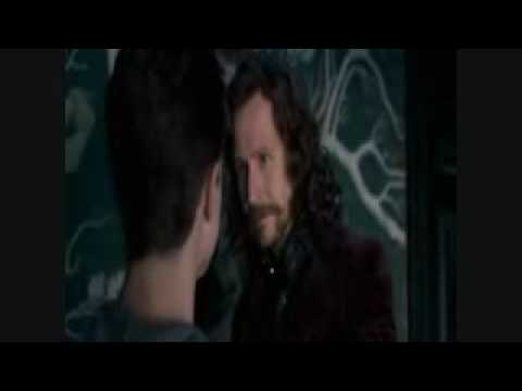 ESCENA DE SIRIUS BLACK EN HARRY POTTER 5  - ESPAÑOL LATINO