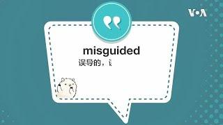 学个词 - misguided