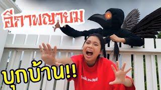อีกาพญายม-บุกบ้าน-ใยบัว-ใยไหม-ภารกิจจะสำเร็จมัย-hello-the-crow-ฟันแฟมิลี่-fun-family