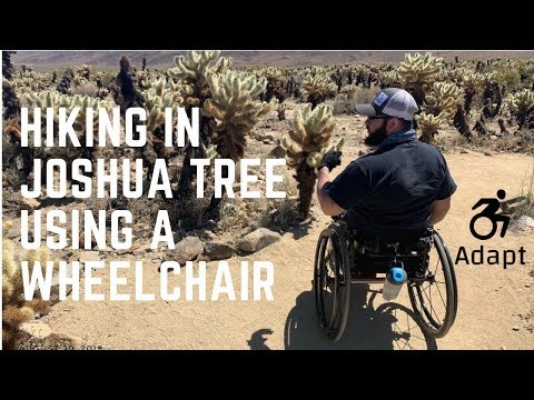 wheelchair-hiking-in-joshua-tree