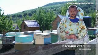 «Сделано в Севастополе». Пчеловоды Байдарской долины