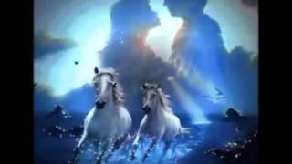 Свет Твоей Любви (концертная версия)