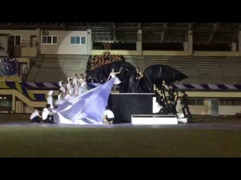 Climax Cheer Leader Pharmacy NU Health sciences game 2016