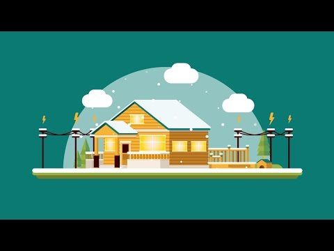 Wood Naturally - Wood Wise  (Infographics Animation Production)