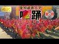 2018 10/28 愛知淑徳大学 鳴踊「BRAVE!(1年生演舞)」 淑楓祭 [4k] MEITO in Shukuf…