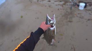 Улов горбуши под конец лета Сахалин рыбалка горбуши