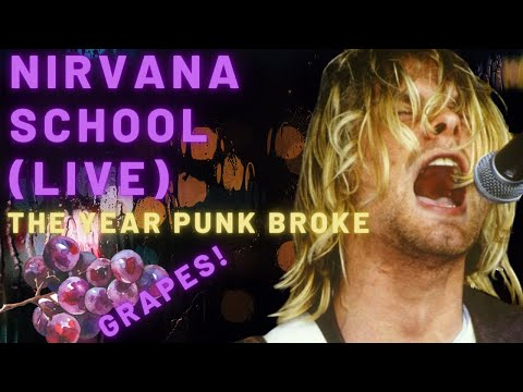 1991: The Year Punk Broke is listed (or ranked) 19 on the list The Best Punk Movies