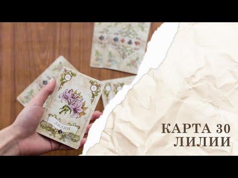 Значение карты Лилия Таро Ленорман