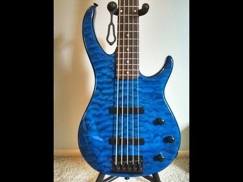 Peavey Millennium 5 String Bass Guitar Review By Scott Grove