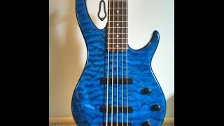 Peavey Millennium 5 String Bass Guitar Review By Scott Grove