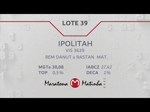 LOTE 39 Maratona Matinha