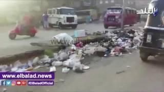 بالفيديو والصور.. شارع أحمد عرابي بشبرا الخيمة يتحول إلى 'مرعى للأغنام ومقلب للزبالة'