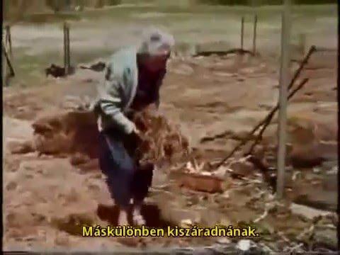 Gardening without work -Ruth Stout 1of2 (ENG-MAGYAR)
