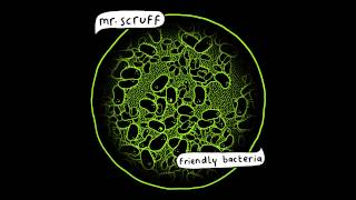 Mr Scruff - Thought To The Meaning (feat. Denis Jones)