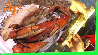 Catch and Cook 🔥 Blue Crab n Sea Trout while iexplore Steinhatchee Fl from kayak hotel EP.393