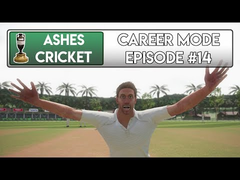 DESPERATION - Ashes Cricket Career Mode #14