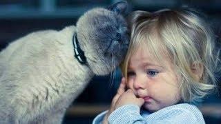 Quand les Chats protègent des Bébés