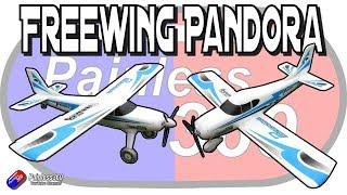 "Freewing Pandora 4-in-1 55"" Aeroplane"