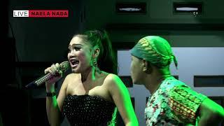 Download lagu Wakoplak Sama WAndi lg Rebutan Kiriman - Melek Wadon - Desi Paraswati - NAELA NADA Live Gebang Kulon