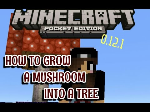 How To Craft Bone Meal In Minecraft Ps