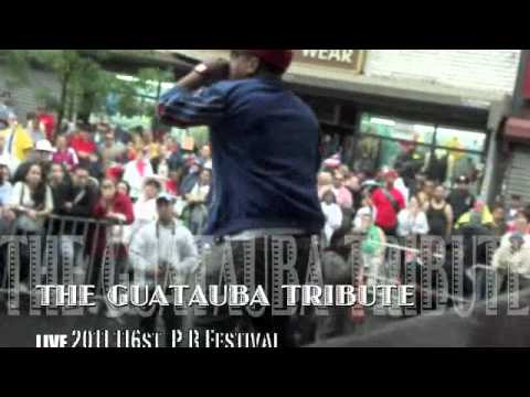 116 Street 2011 Puerto Rican Day Festival with SoundCArta