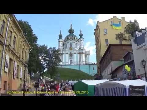 Independence Day at Saint Andrew Descent, Kiev Ukraine 24.08.2015