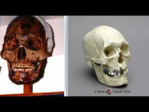 Giant Skulls in a Nevada Museum Show Polynesian Origins.