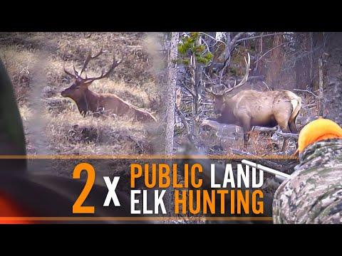 Public Land Elk Hunting  DIY with Guy Eastman
