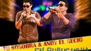 Tu Sosobra & Andy El Necio - En Burucucha