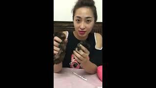 Hướng dẫn chăm sóc cún sİnh non tại nhà chi tiết nhất