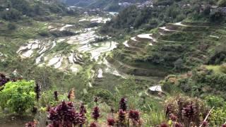 世界遺産、フィリピン・コルディリェーラの棚田群4 【バナウェ】