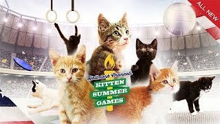 Road to the Kitten Summer Games - Episode 1: The Trials - Kitten Summer Games