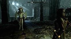Let's Play Skyrim [Deutsch/PC] #405: Sturm auf Burg Volkihar: Konfrontation mit Harkon