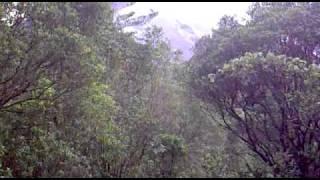 Caminata entre rocas y ceniza del volcán Arenal