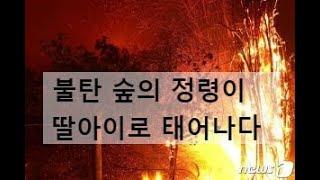 160. 불탄 숲의 정령이 딸아이로 태어나다