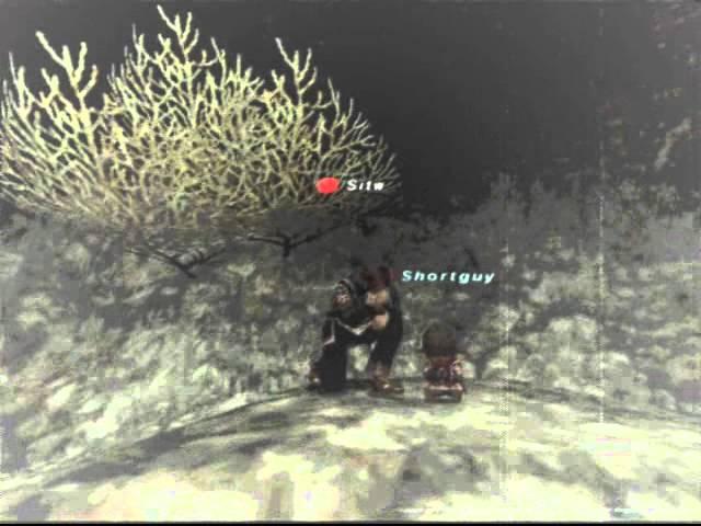 Final Fantasy XI Memories