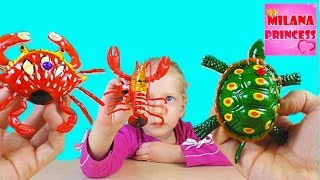 Игрушки Морские обитатели Черепаха, краб и рак / Toys Marine life turtle, crab, and cancer