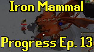 Oldschool Runescape - 2007 Iron Man Progress Ep. 13 | Iron Mammal