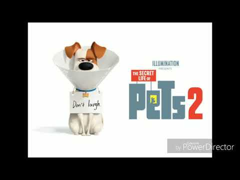 [Tikus Bioskop] The Secret Life Of Pets 2 (review)