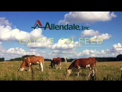 Cattle on Feed May 2017