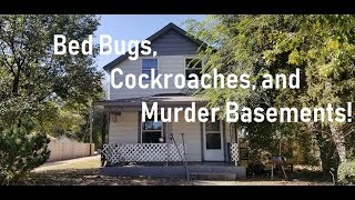 Bed Bugs, Cockroaches, and Murder Room Basement in Rental #16