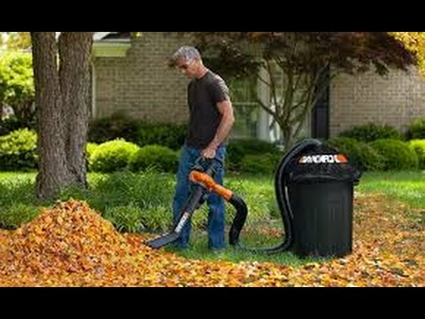 Backpack Leaf Vacuum