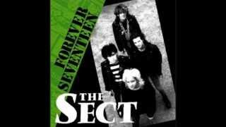 "The Sect  ""Forever Seventeen""  No.669"