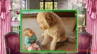Счастливые моменты.Животные и дети. Pets and children